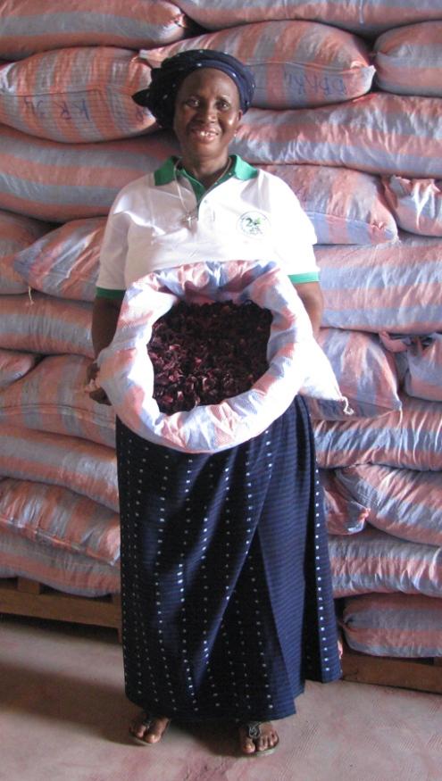 Suzanne Traoré, présidente de la section bissap de L'UGCPA/BM et une partie de la récolte... Le bissap est le nom ouest-africain donné à la fleur d'hibiscus.